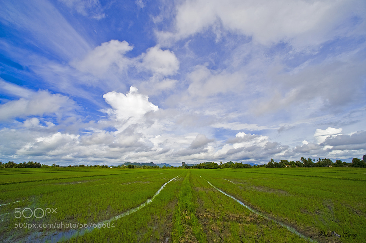 Photograph Look Good in Blue by Johari (Paklang) Saad on 500px