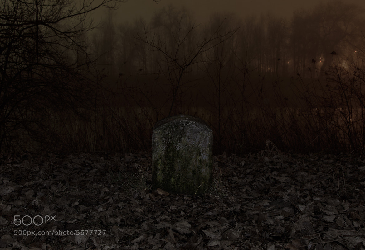 Photograph Stone 447 by Daniel Beck on 500px