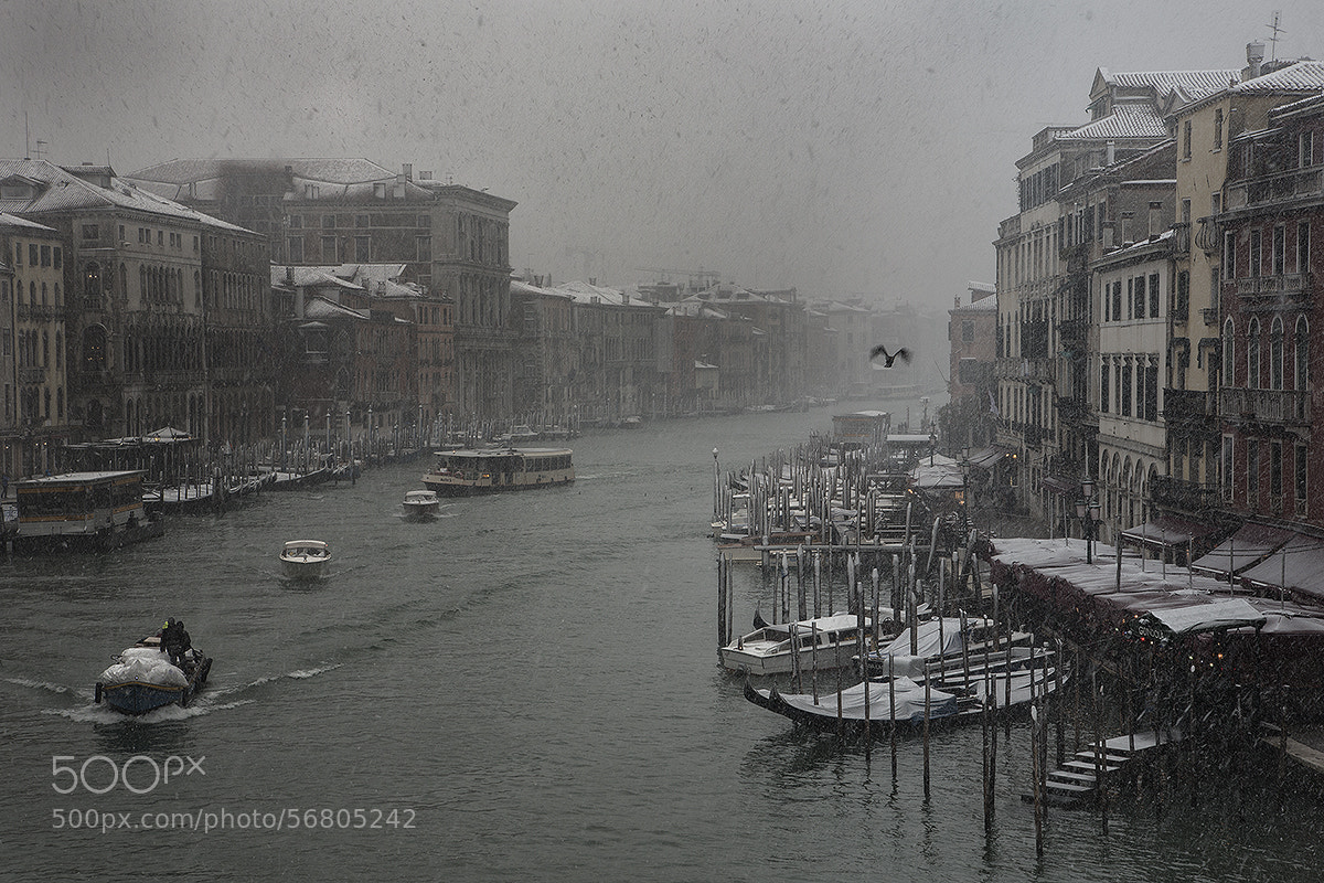 Photograph Snowy Venice by Rob Lafreniere on 500px