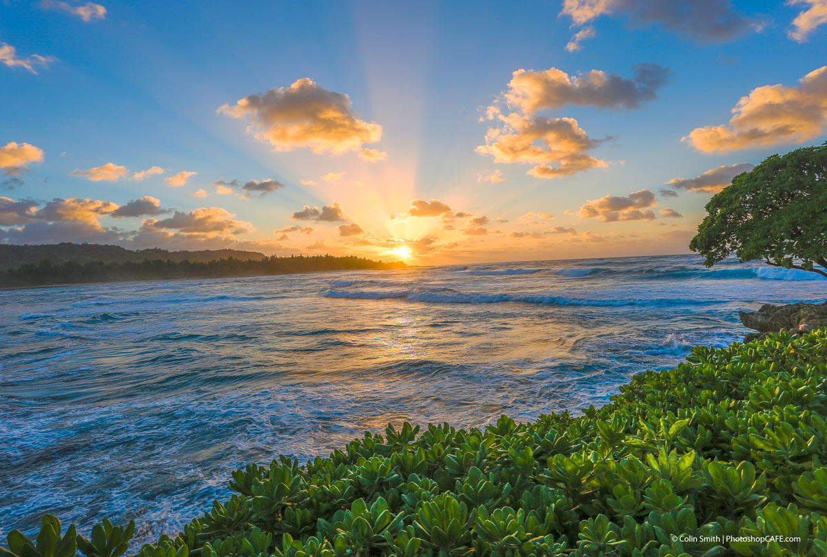 Photograph San Rays in Paradise by Colin Smith on 500px