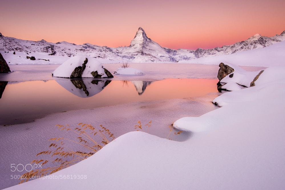 "Photograph ""Soft Winter"" Switzerland by Dan Ballard on 500px"