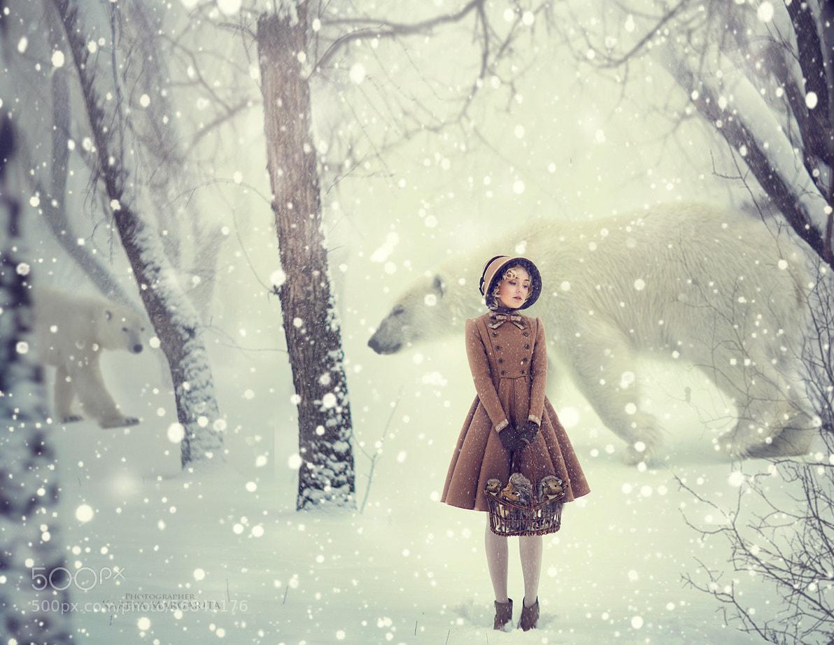 Красивые зимние картинки (35 фото) Прикольные картинки и юмор 93