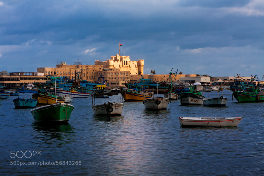 Alexandria Fort