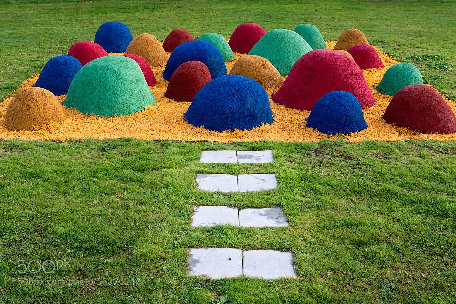 A play ground