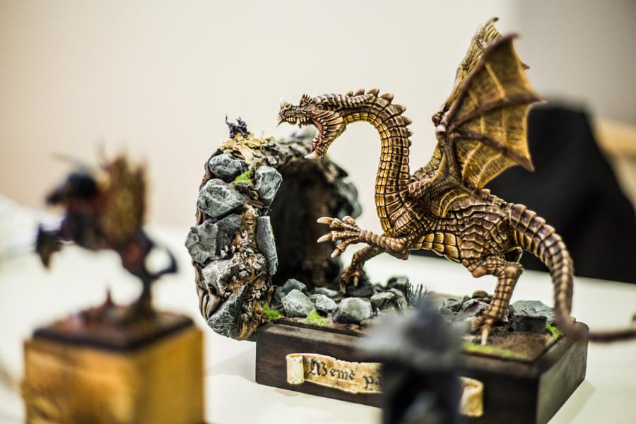 Don Des Dragons 2013