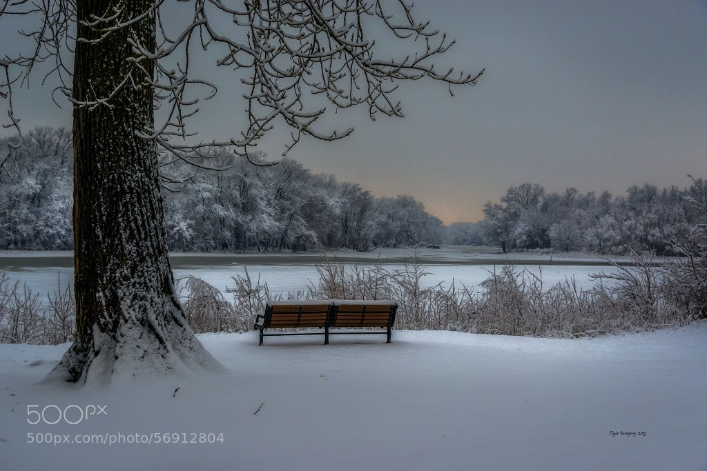 Photograph Blessed Solitude by Toni Taylor on 500px