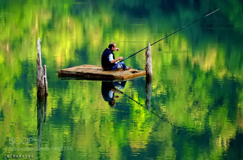 Photograph deep green.. by karayelim on 500px