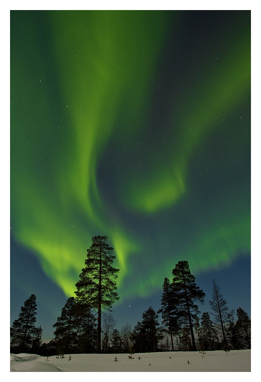 Photograph Northern lights by Jules Cox on 500px