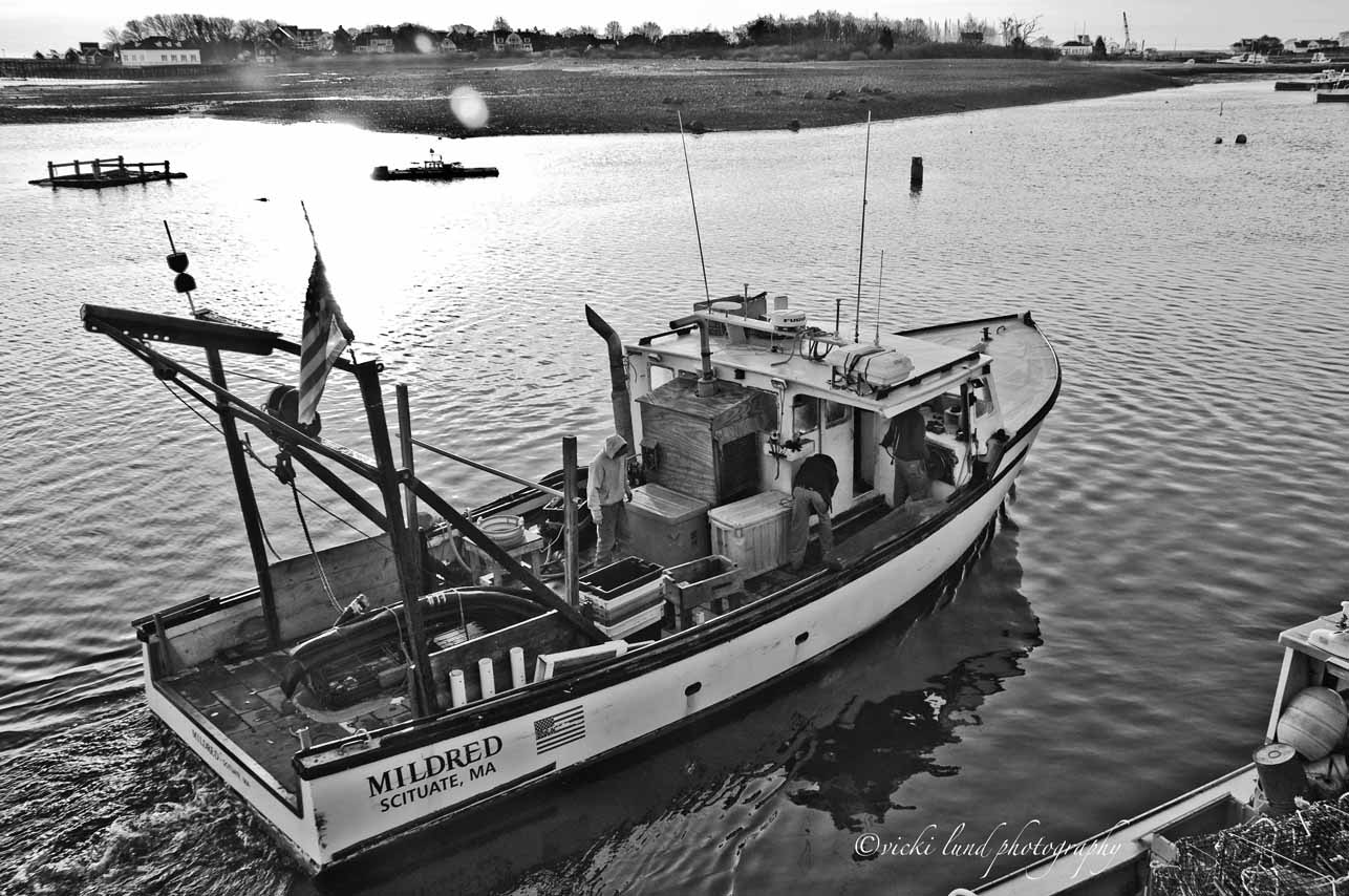 Photograph Mildred ~B&W, Scituate, MA. by Vicki  Lund on 500px