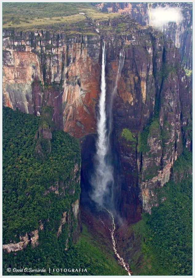 Photograph Salto Angel / Angel Falls 979mts by David D.Bernárdez on 500px