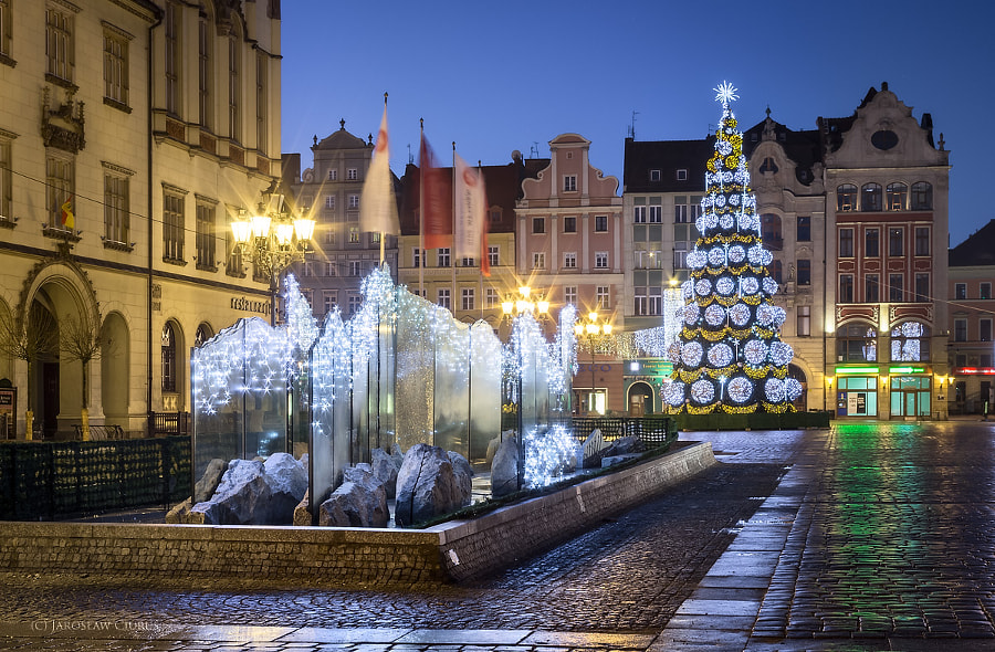 Christmas Tree and fountain
