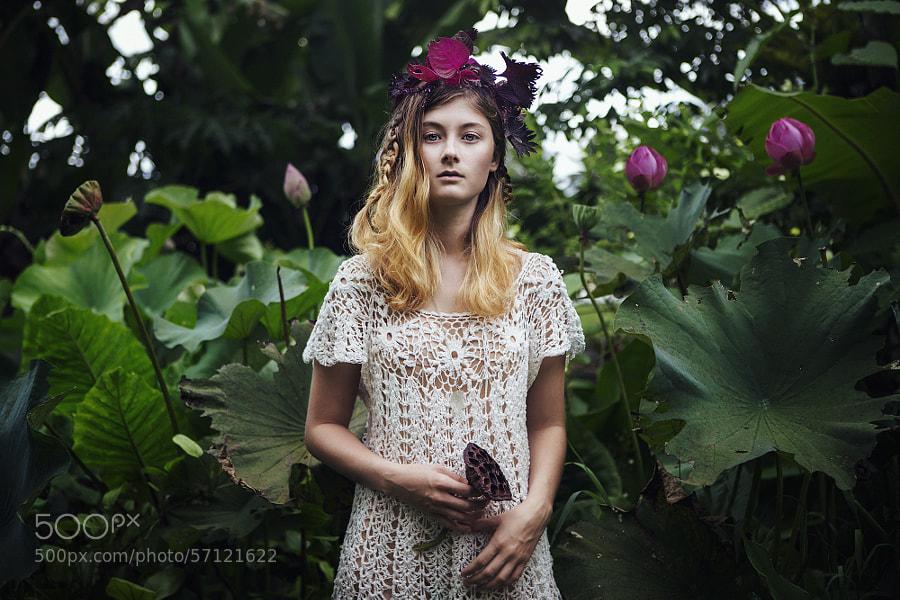 Photograph white lotus by Bella Kotak on 500px