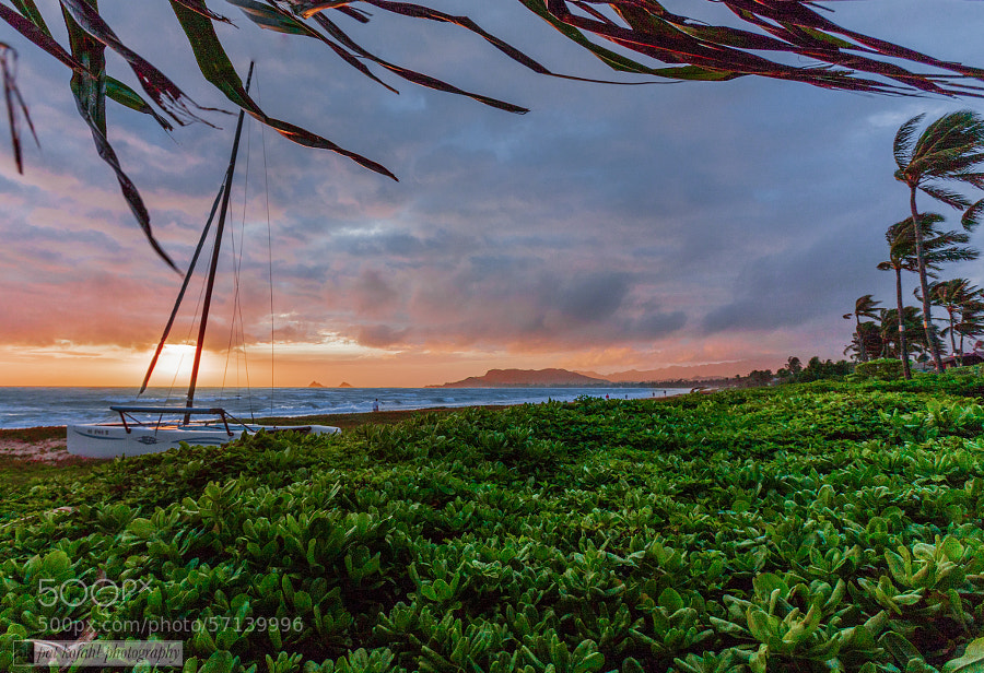 Sunrise - Windward Shore by Pat Kofahl on 500px.com