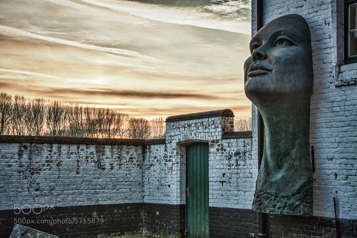 Photograph Lady on the wall by Patrick Hendrickx on 500px