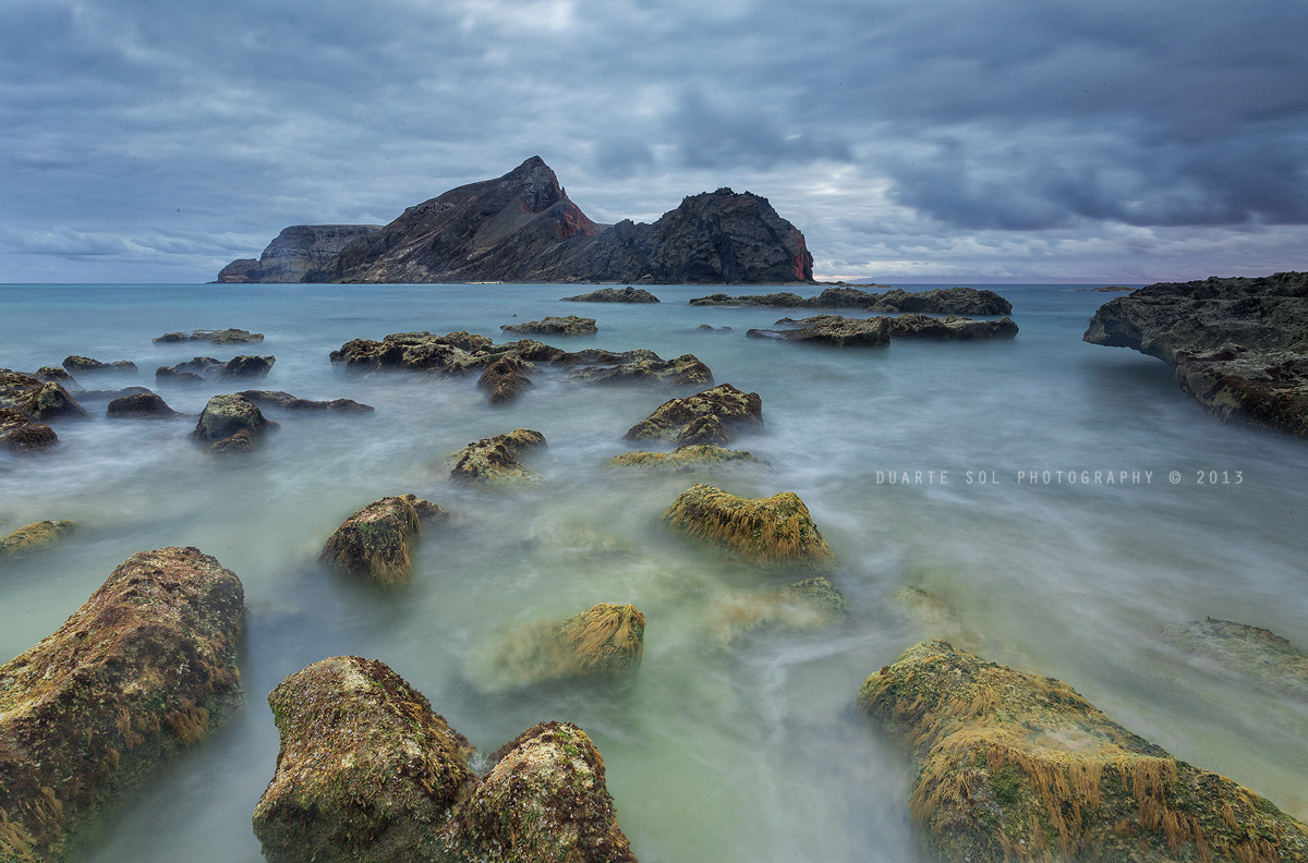 Photograph Dispersed Path by Duarte Sol on 500px