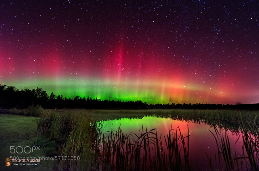 Photograph October Aurora in Maine by Mike Taylor on 500px
