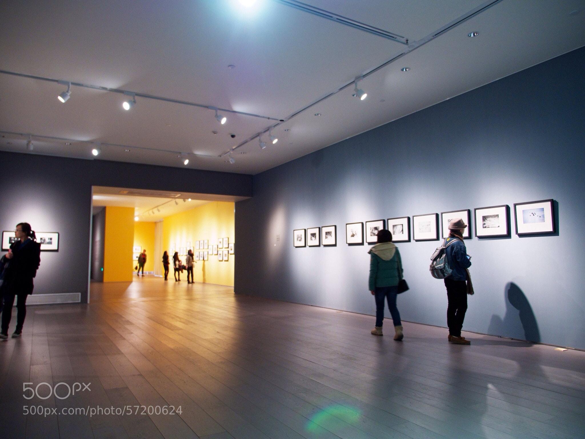 Photograph 荒木经惟 by lin lv on 500px