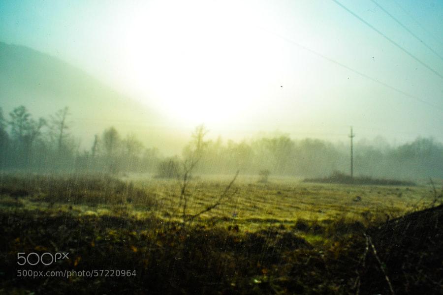blur by Robert Iagar on 500px.com
