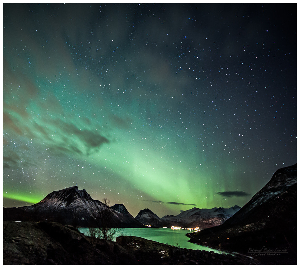 Photograph Northern Night by Bjørn Leirvik on 500px