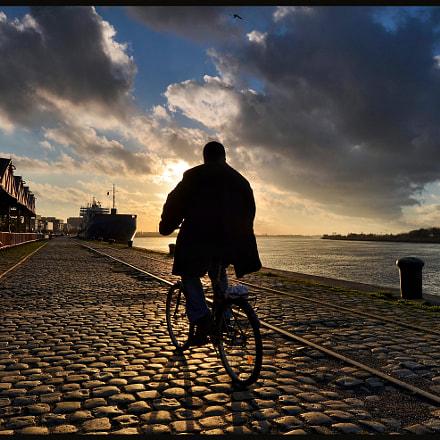 Mr. Bicycle Man