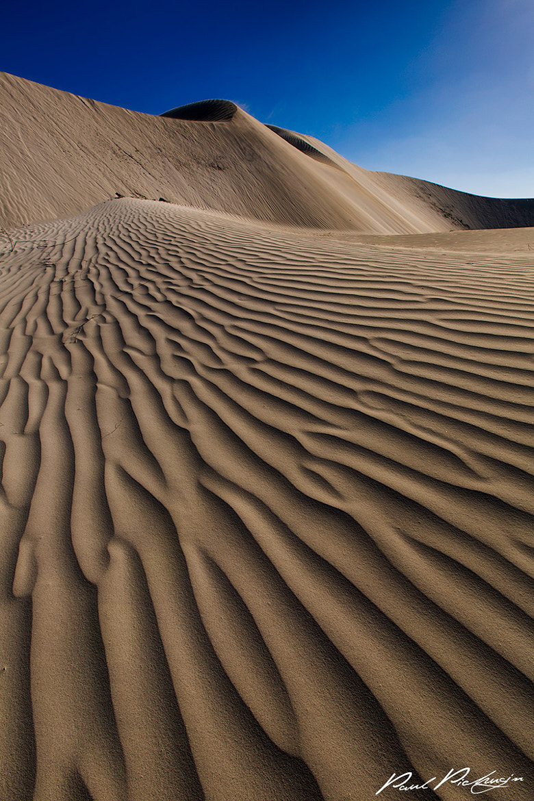 Photograph Coral Coast Dunes by Paul Pichugin on 500px