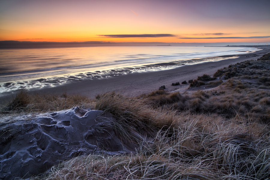 Frosty Dunes, Warkworth Beach