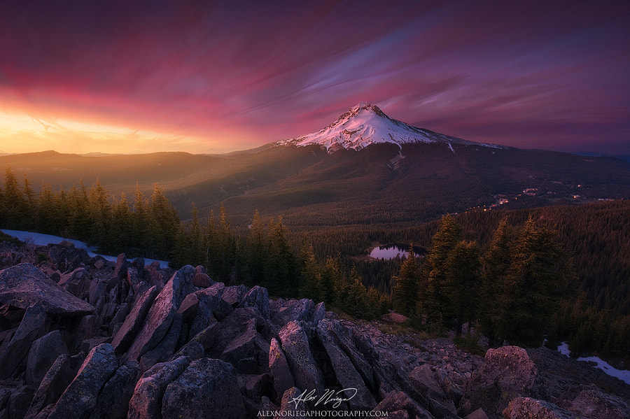 Fine Art Landscape Photography, Lost by nature and landscape photographer Alex Noriega