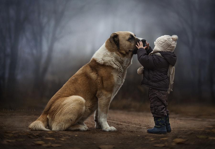 *** by Elena Shumilova on 500px.com