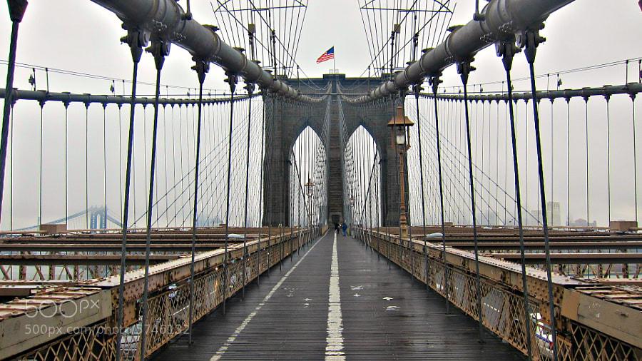 Manhattan, New York City  January 2012