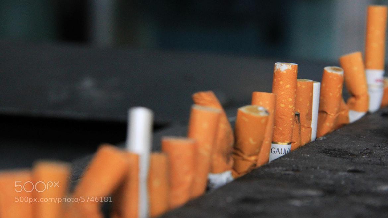 Photograph Cigarette butts by Henrik Moberg Jessen on 500px