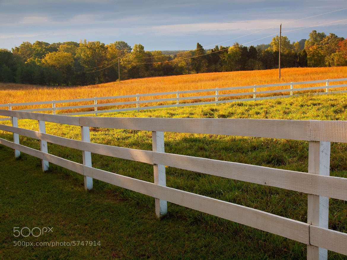 Photograph October Morning by Stephen Muskie on 500px