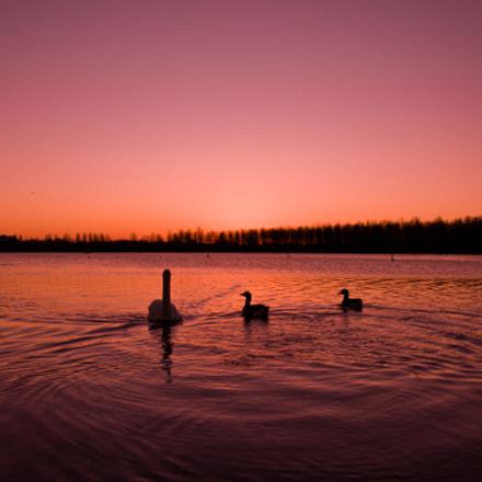 Sunrise at Willen Lake