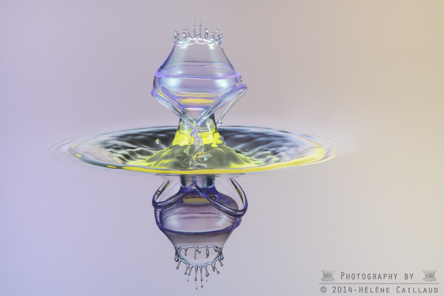Photograph Chalice by Helene Caillaud on 500px