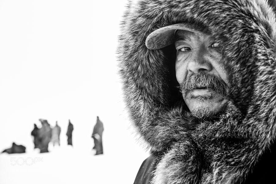 Eyes On The Arctic by Dave Brosha (davebrosha) on 500px.com