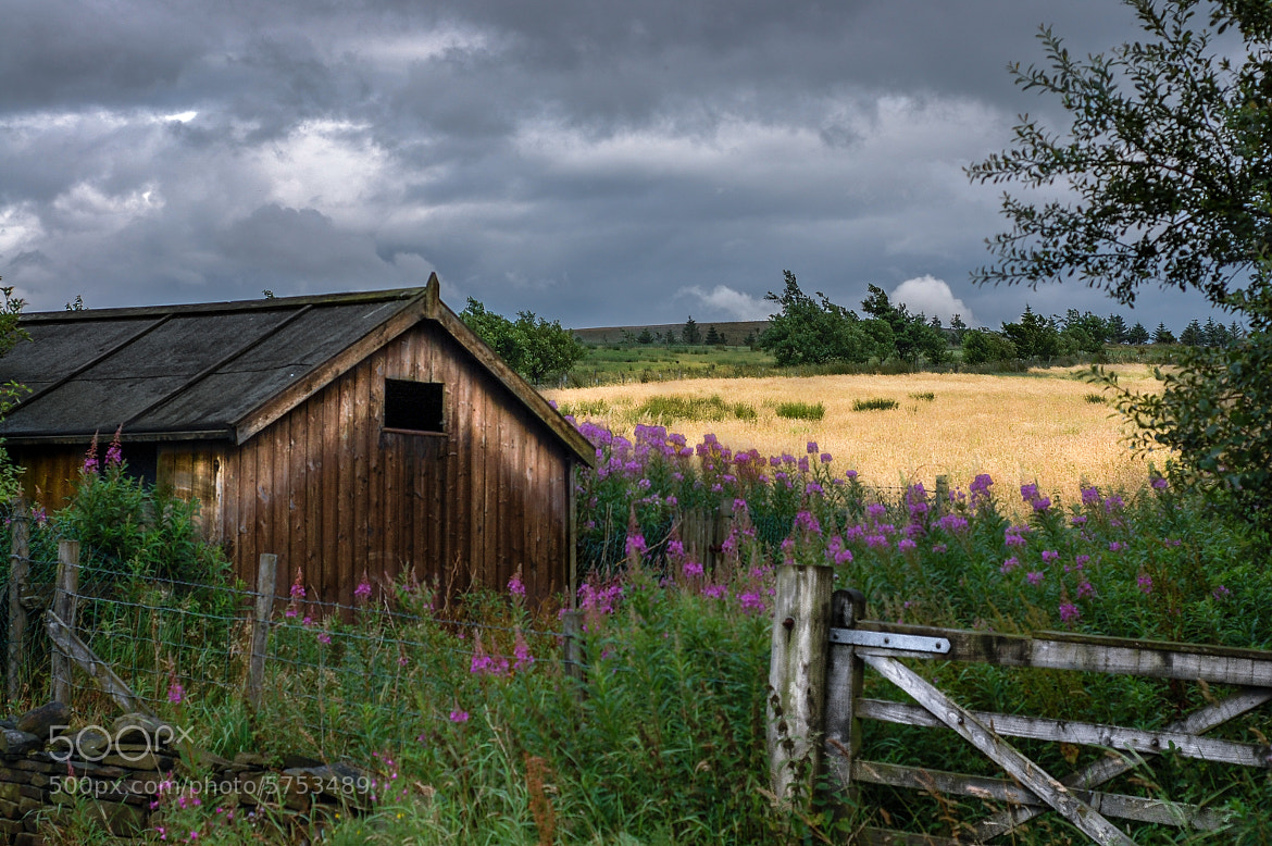 Photograph Pickup Barn by Damion Bridson on 500px