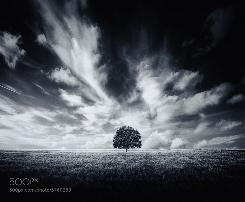 Photograph Cloudy... by Roman Trudowoi on 500px