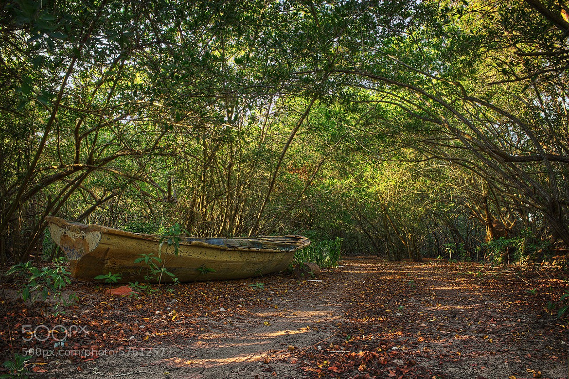 """Photograph Resting """"panga"""" boat in a path to nowhereland by Shanti Gilbert on 500px"""