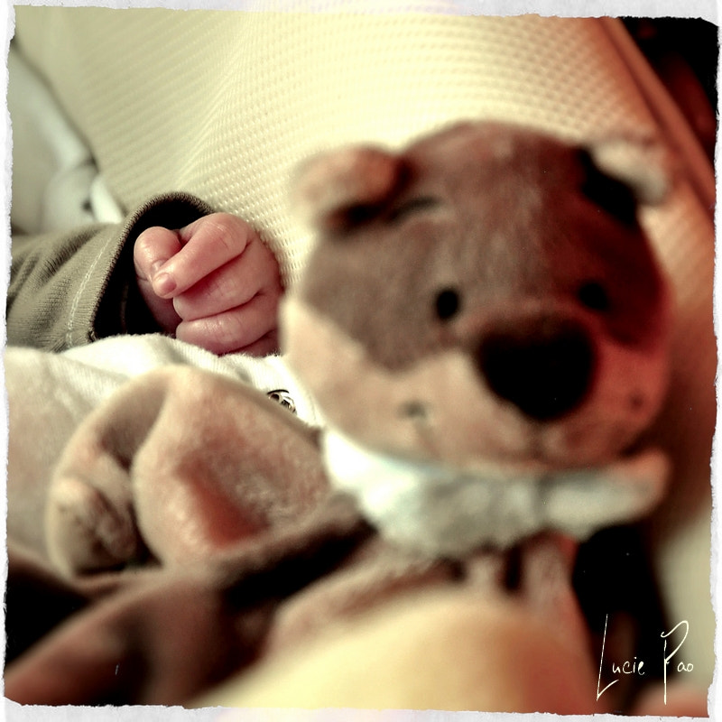 Photograph His Teddy Bear by Lucie Pao on 500px