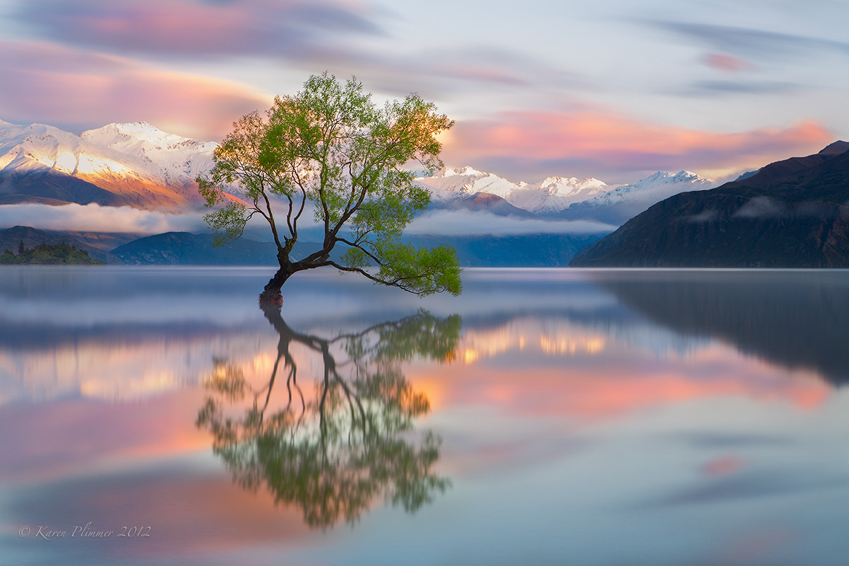 Photograph You may say I'm a dreamer by Karen Plimmer on 500px