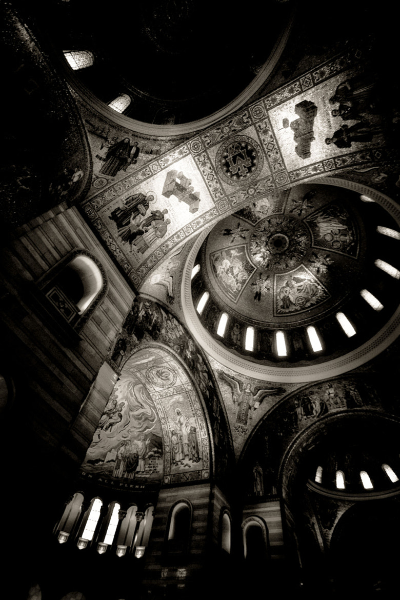 Photograph Cathedral Basilca of St. Louis by Dennis Herzog on 500px