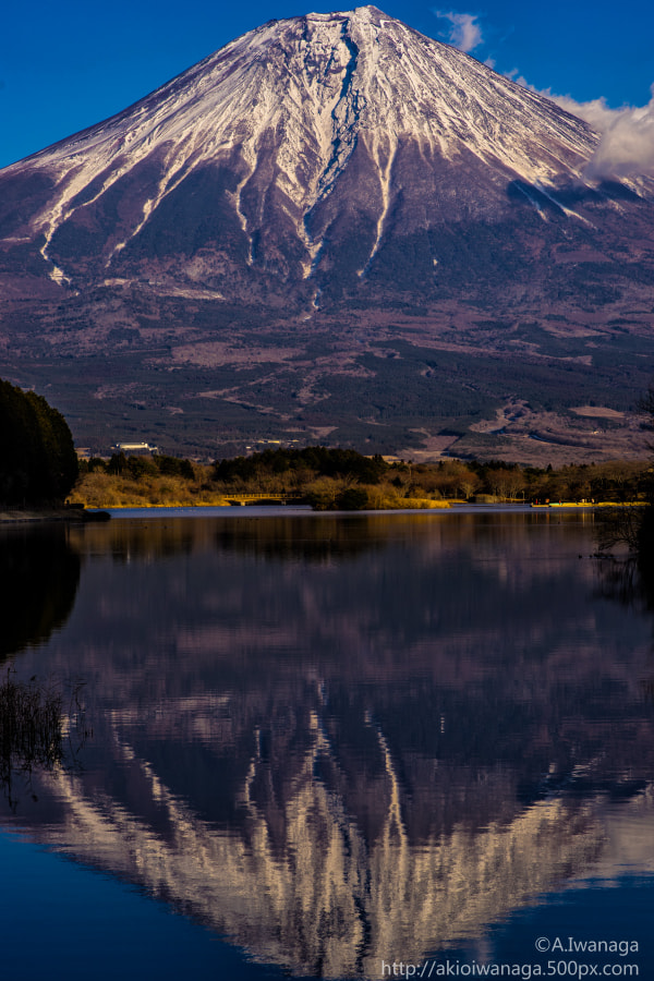Mt Fuji mirror