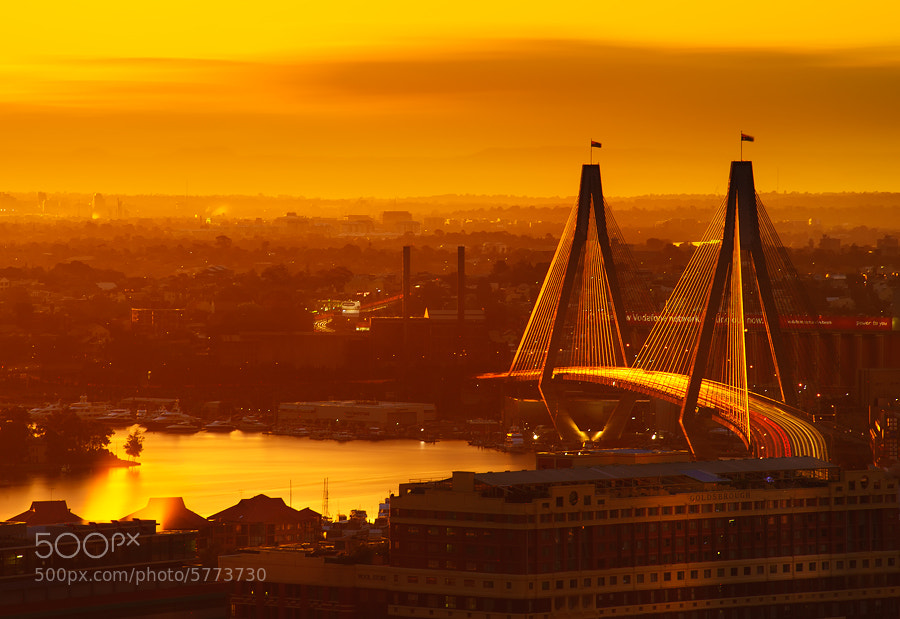 Photograph Golden Rush Hour by AtomicZen : ) on 500px