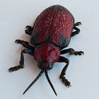 Постер, плакат: Red Poisonous Beetle