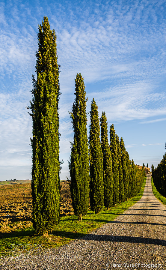 This typical scene was shot during the Tuscany November 2013 photo workshop. There will be a new photo workshop in Tuscany in November 2014. Seats are available.