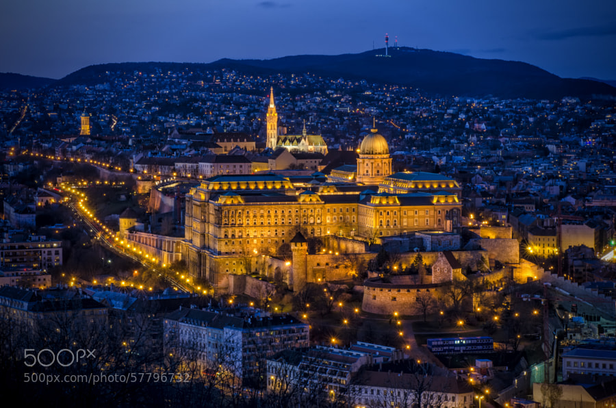 Photograph Buda Castle by Csilla Zelko on 500px