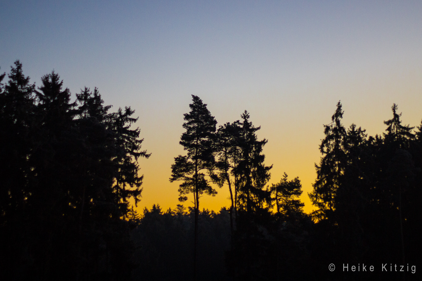 Photograph Sunrise with trees by Heike Kitzig on 500px