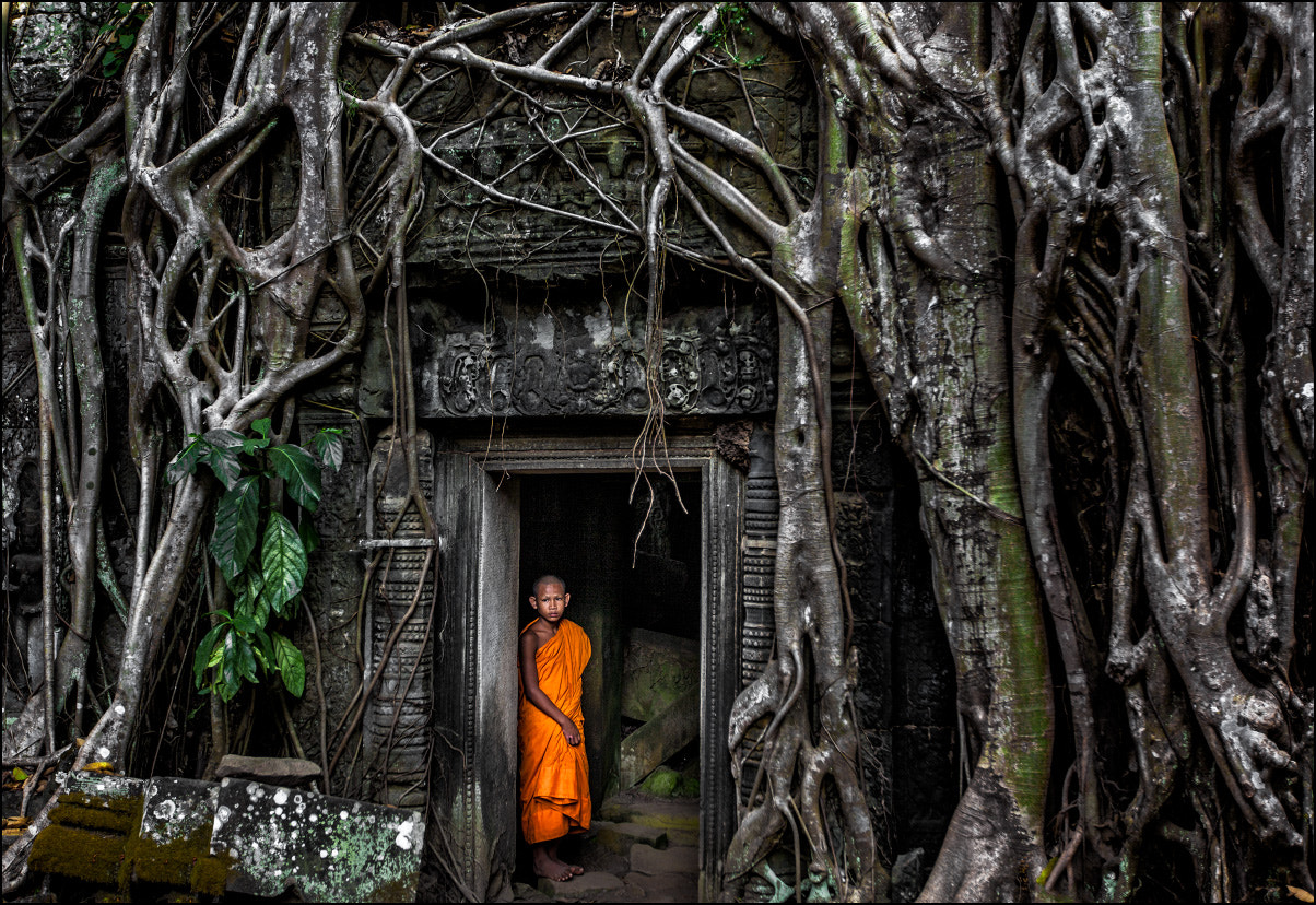 Photograph Lost City of Angkor by Michail Vorobyev on 500px