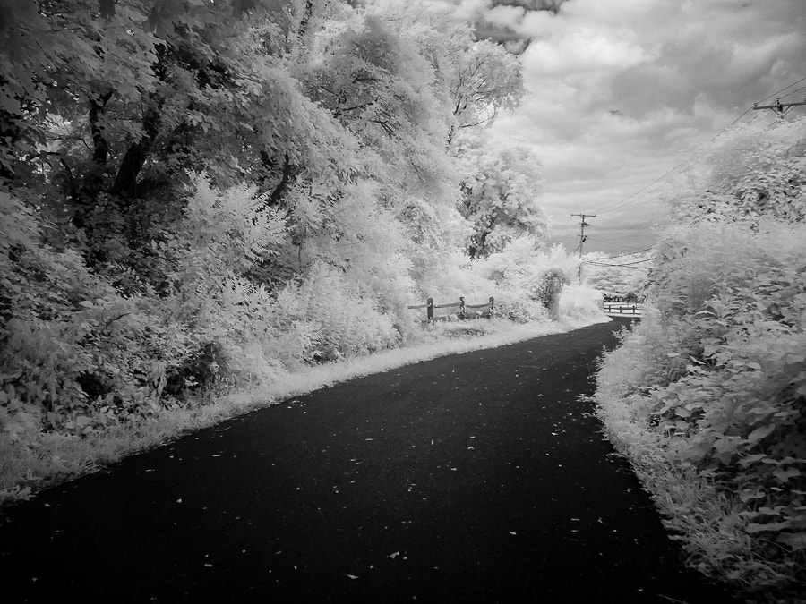 Photograph Path by Dave Rogers on 500px