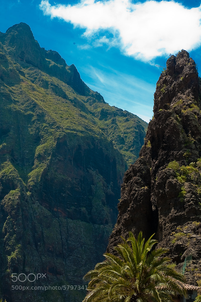 Photograph Masca by Tom Tolkien on 500px