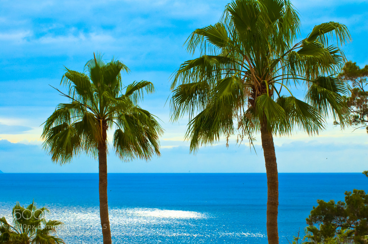 Photograph Tenerife by Tom Tolkien on 500px